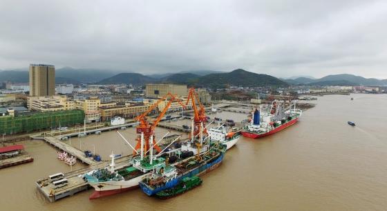 舟山远洋渔业码头卸货忙