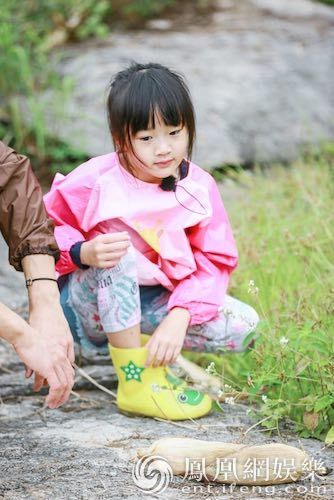 """《爸爸5》吴尊想看杨洋带娃 心疼老婆""""不想再生"""""""