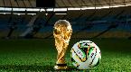 600多名外国球迷免签过境白俄罗斯观看世界杯