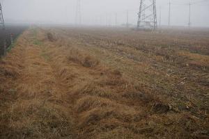 重拳!長沙實行最嚴格農作物秸稈禁燒制度