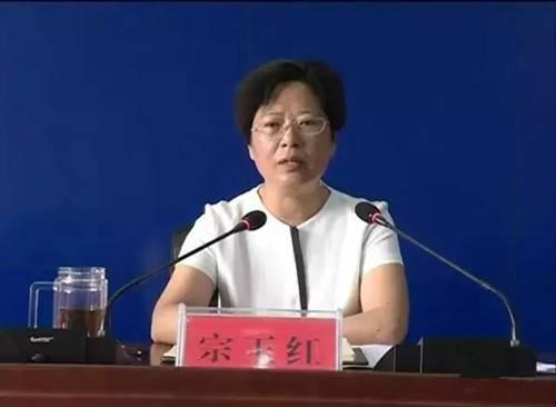 嵩县扎实推进国家全域旅游示范区创建工作