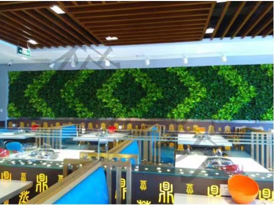 生态智能植物墙 加盟中国植物墙网让你事业财富双丰收