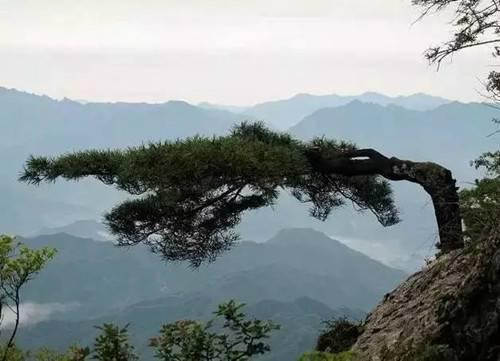 旅游  九皋山(资料图片) 龙池曼 龙池曼风景区:以古老原始,潭瀑幽美而