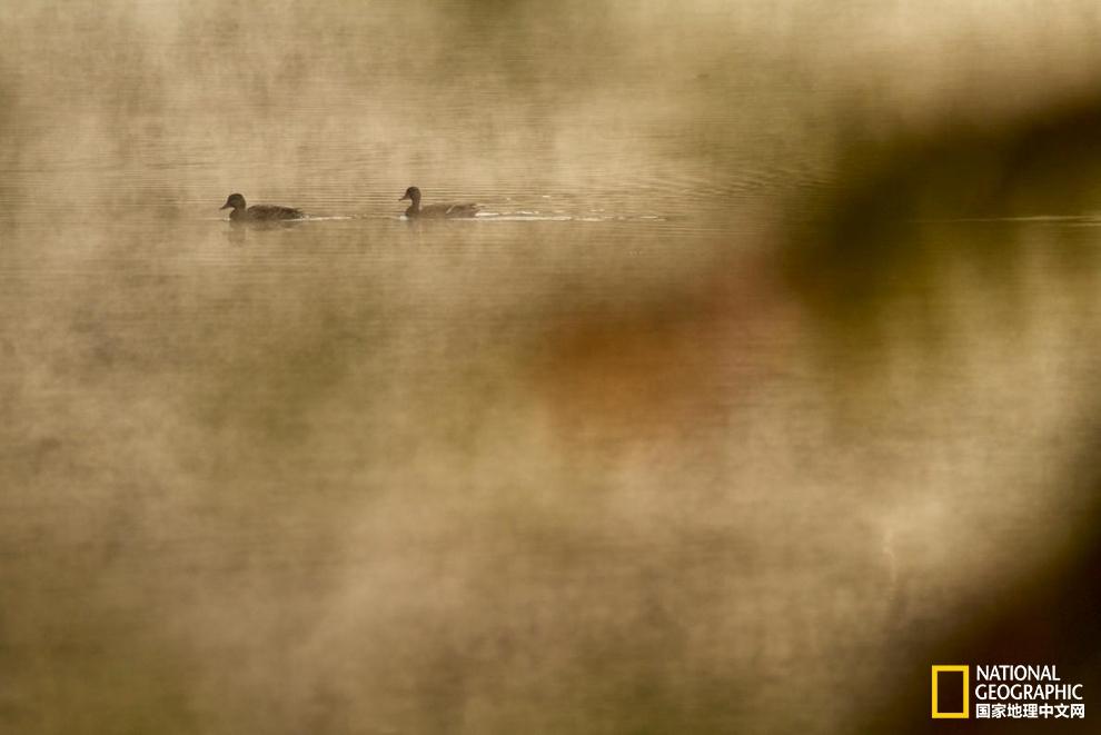 梭罗笔下的瓦尔登湖,至今依然灵气十足pic