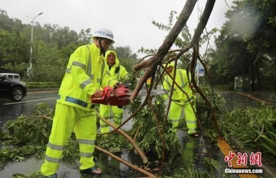 台风来袭,海南三亚公安交警在凤凰路上清理倒伏的树木。 中新社记者尹海明摄