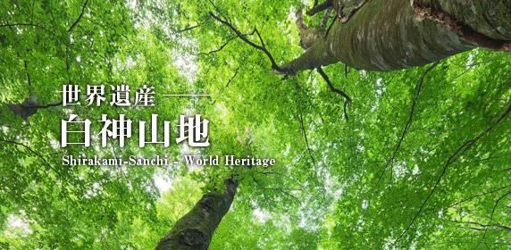 想看日本最美的世界遗产 住这几家酒店就够了!