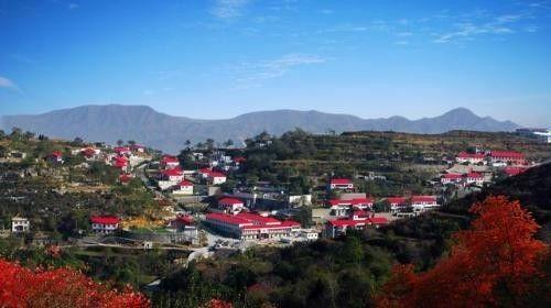 关于河南项城的风景