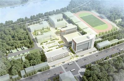 胶州将建国家级青训中心 打造足球特色小镇_青岛频道