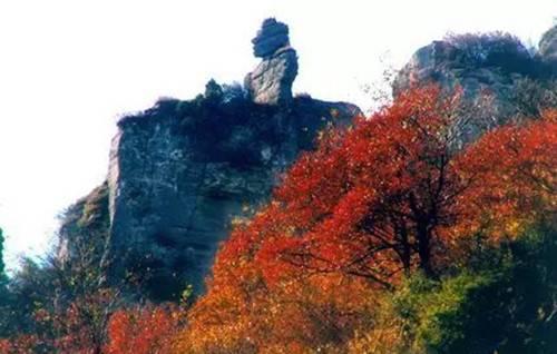 郑州向西一小时 浮戏山中赏秋色