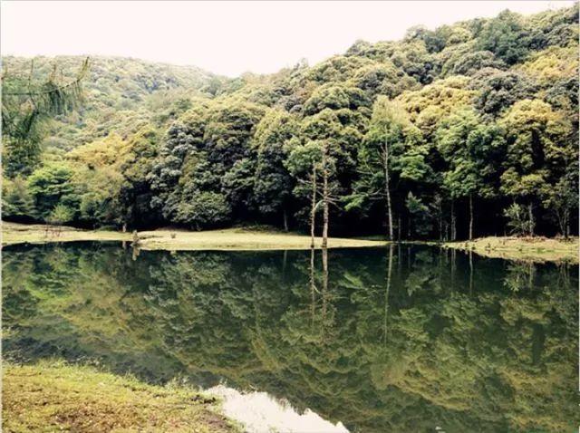 境内最高海拔2913米,最低海拔1150米,气候垂直变化明显,森林植被具有