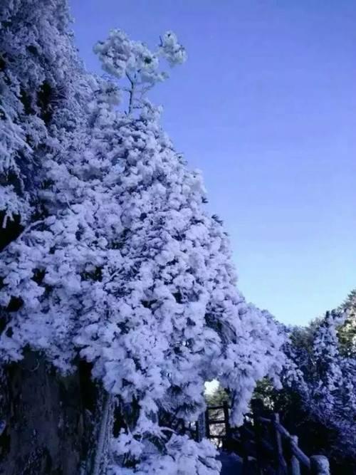 这个冬天为什么要去尧山因为景美而且门票还打折