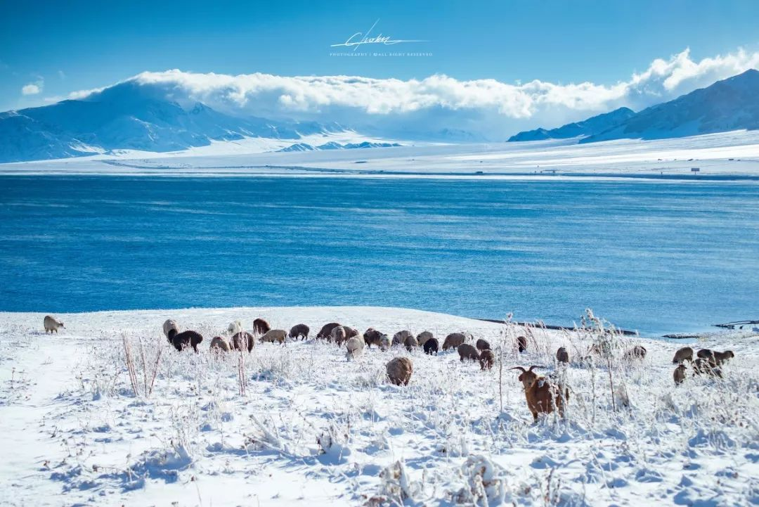 国内独一无二冰泡奇观 不在四川不在西藏