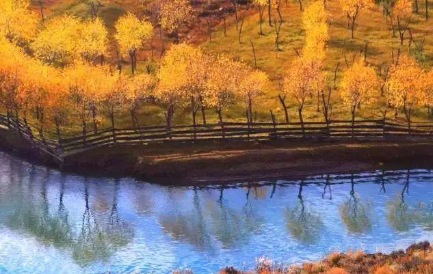 山峰再高,也拦不住秋色的渲染秋季的林芝,每一分每一秒都美成油画.
