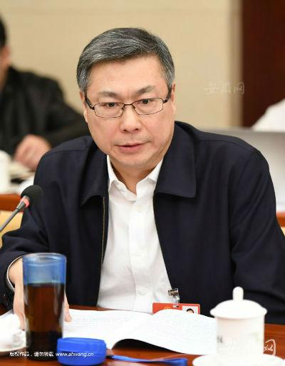 天下人大代表、安庆市长陈冰冰