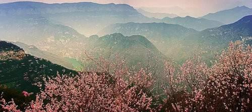自驾游青天河赏桃花盛宴高速免费