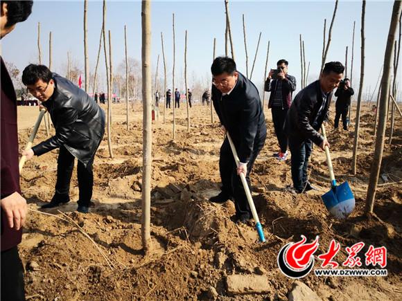 践行蓝天责任 单县组织开展大型植树活动