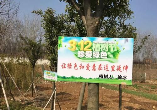"""""""偏爱绿水青山共建和谐家园""""芒砀山旅游区开展义务植树活动"""
