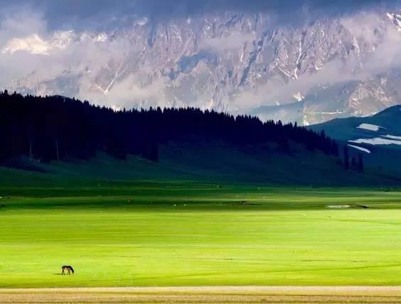 如果不去西藏 就去新疆看繁星如许、尝瓜果飘香