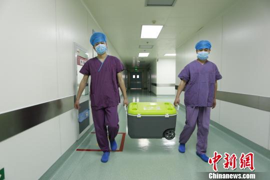 医生运送器官。 院方提供