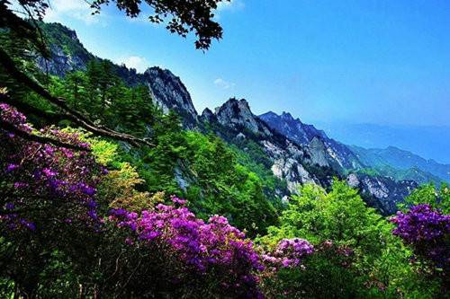 旅游  尧山风景区(资料图片) 从山下至山上,红,白,粉,紫各种颜色,人在