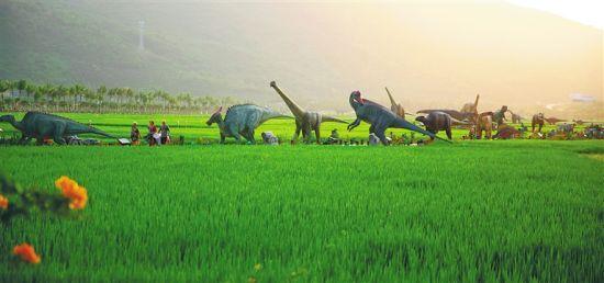 三亚海棠湾水稻公园。 本报记者张茂摄