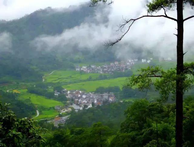 """旅游  梅岭风景名胜区位于南昌市西郊15公里处,在江南最大的""""飞来峰"""""""