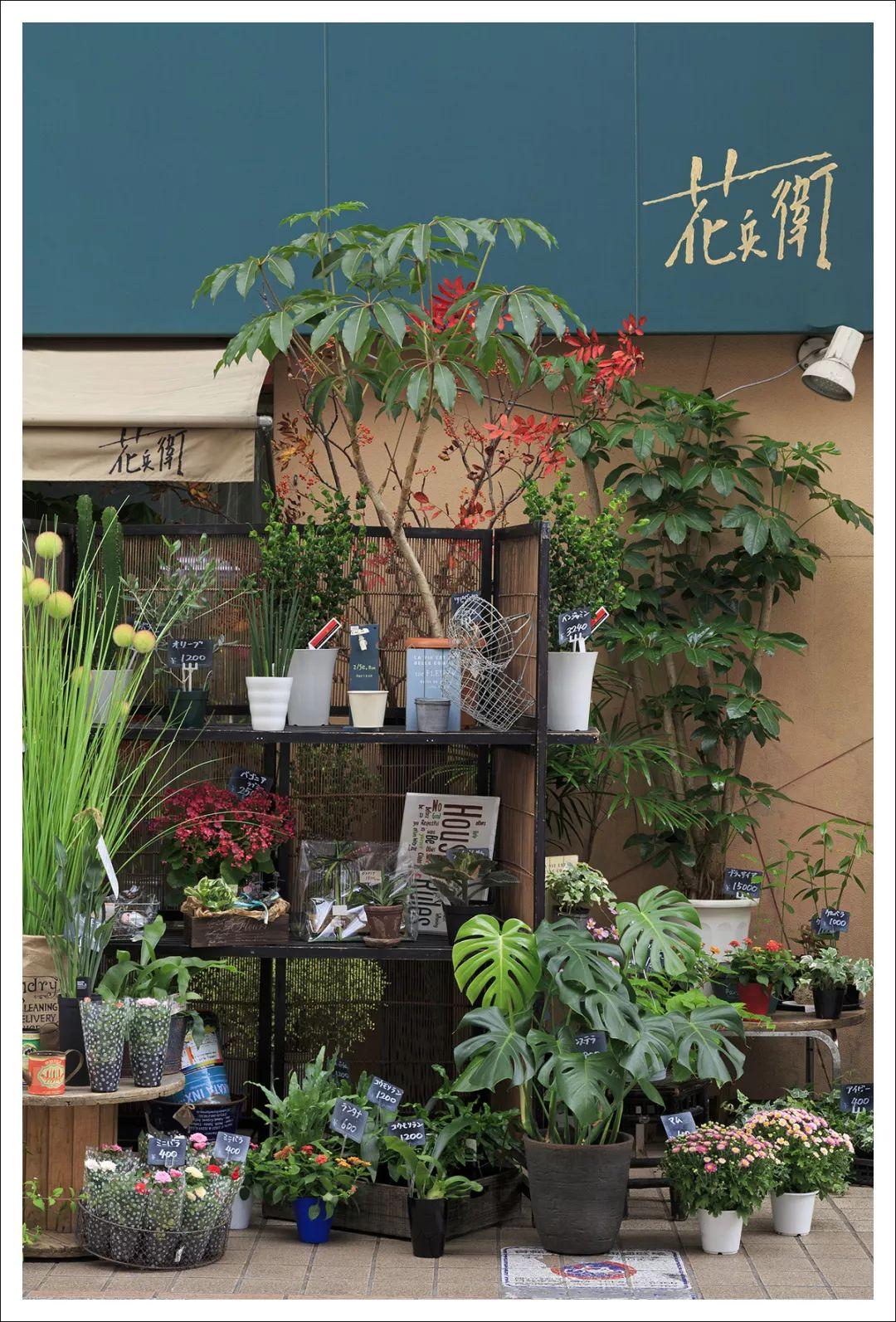 去东京 那些不可错过的唯美花店