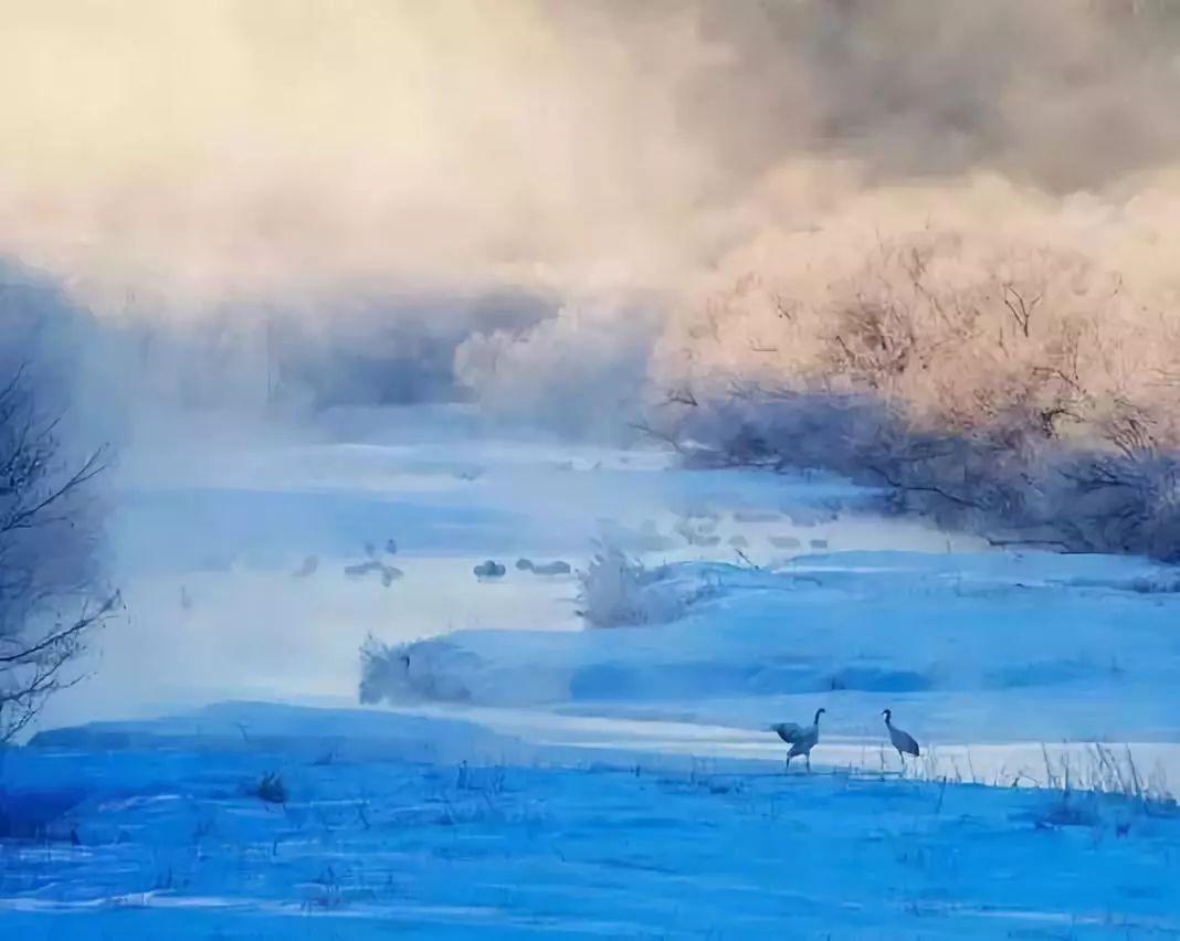 有这10种体验的北海道之旅才够深入道东