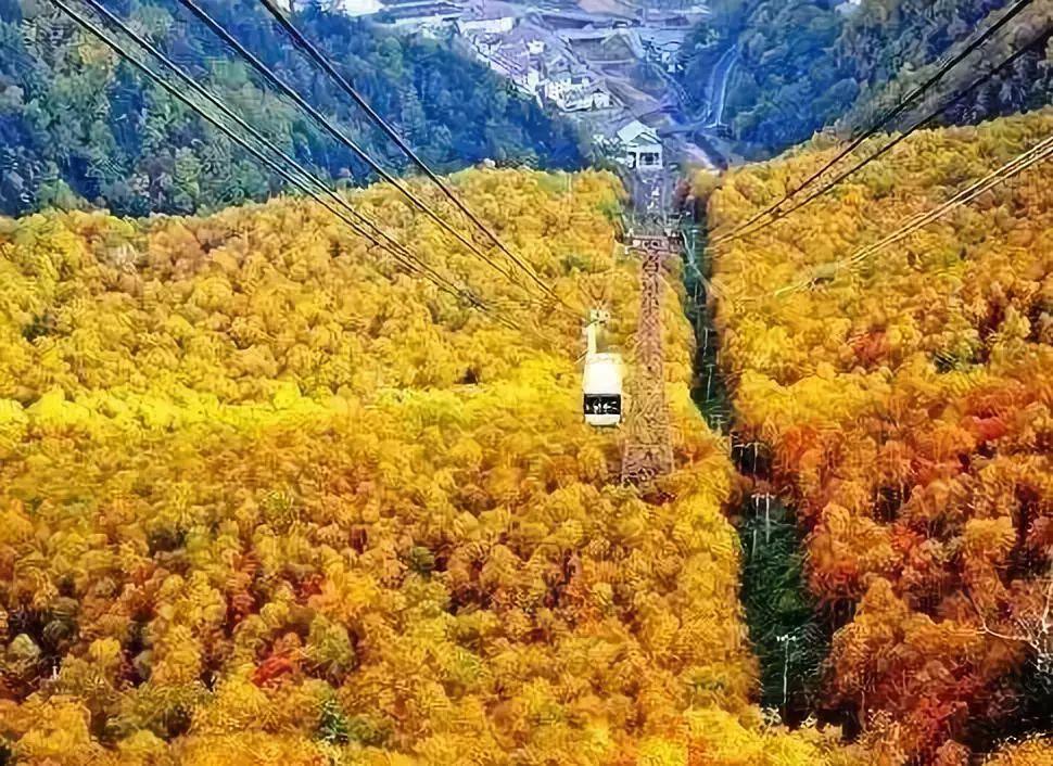 10月最佳旅行地推荐 这几个地方藏着秋天最美的风景!
