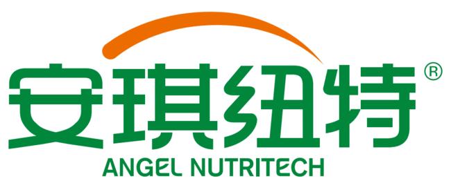 安琪纽特荣膺2018CBME AWARDS营养品品类年度影响力品牌