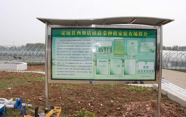 安徽定远:聚焦乡村振兴战略谱写绿色发展新篇章图18