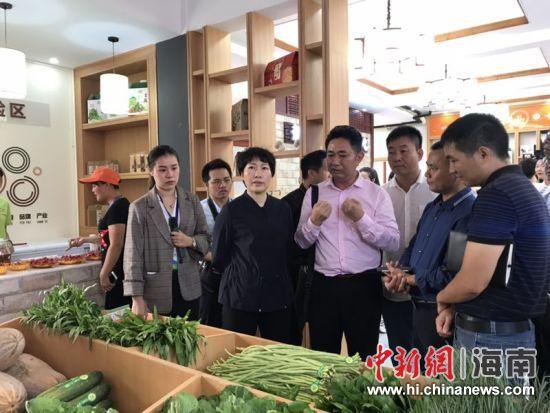 3月13日,海口龙华区新坡电商服务中心在新坡镇正式投入运营。刘伟供图
