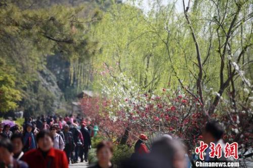 4月1日,大批游客在江苏扬州瘦西湖踏青游玩,亲近自然。 孟德龙摄