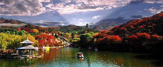 济南的秋天风景