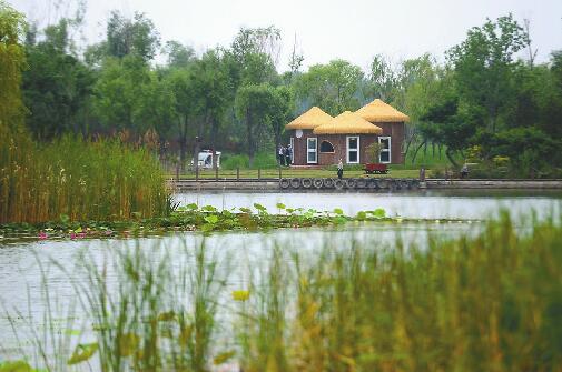 """济西国家湿地公园6月""""开门纳客"""" 试运营期间免费"""