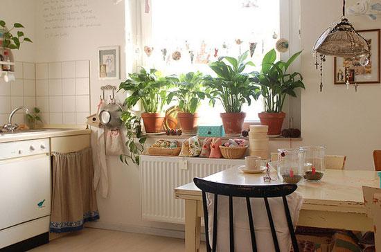加入绿植花卉