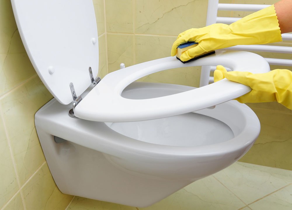 马桶圈细菌多,需重点清洁