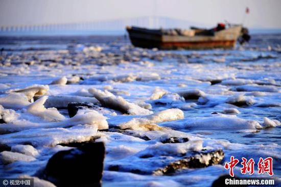 青岛胶州湾海冰再起 厚度超十厘米