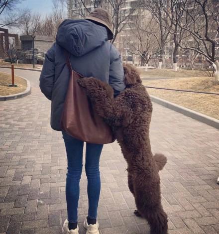 倪妮、钟楚曦的好身材太耀眼 快来get同款美腿