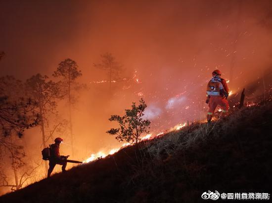 最新消息!云南丽江玉龙森林火灾疑似纵火 嫌疑人已被控制