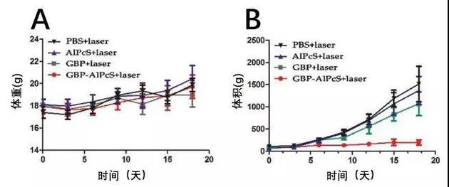 小鼠体重与肿瘤体积随时间的变化(图片来源:论文)