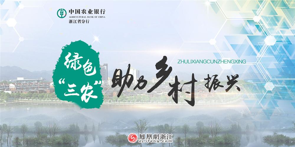 """农业银行浙江省分行:绿色""""三农""""助力乡村振兴"""