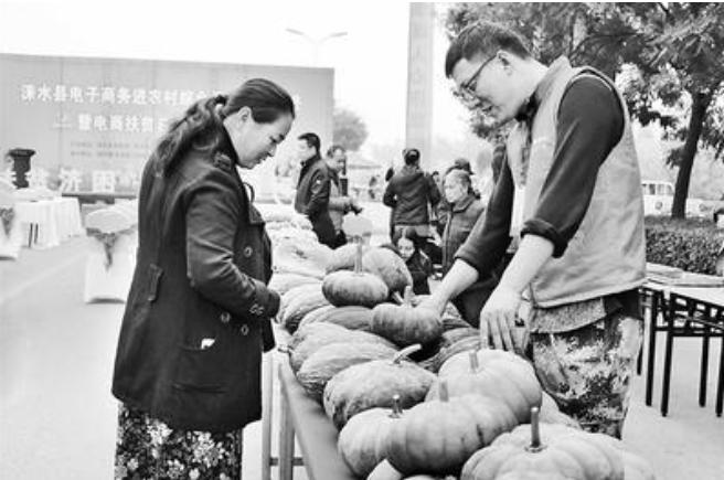北京保定协作推动电商扶贫:让贫困群众搭乘增收快车