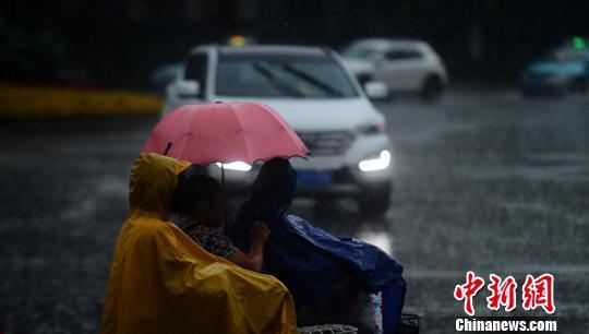 圖為市民打著雨傘在風雨中出行。 孟德龍 攝