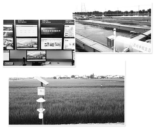 ① 江蘇蘇州吳江國家現代農業示范園區的智慧農業管理中心。