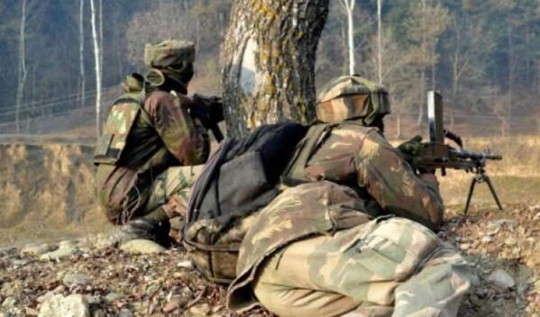 印度内政部长:2022年之前将解决克什米尔争端